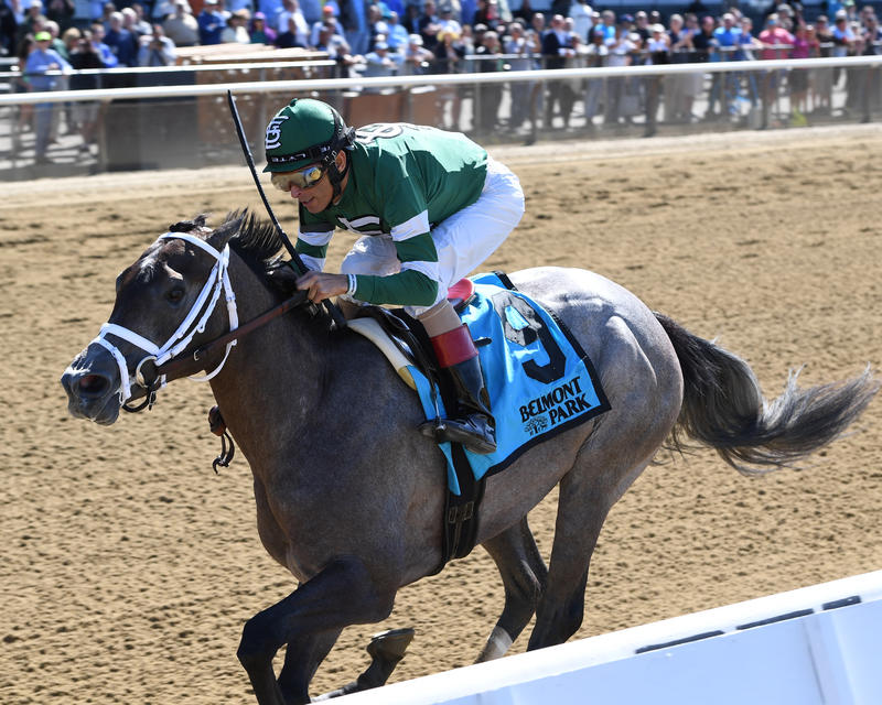 Bode's Dream (NYRA/Adam Coglianese Photography)