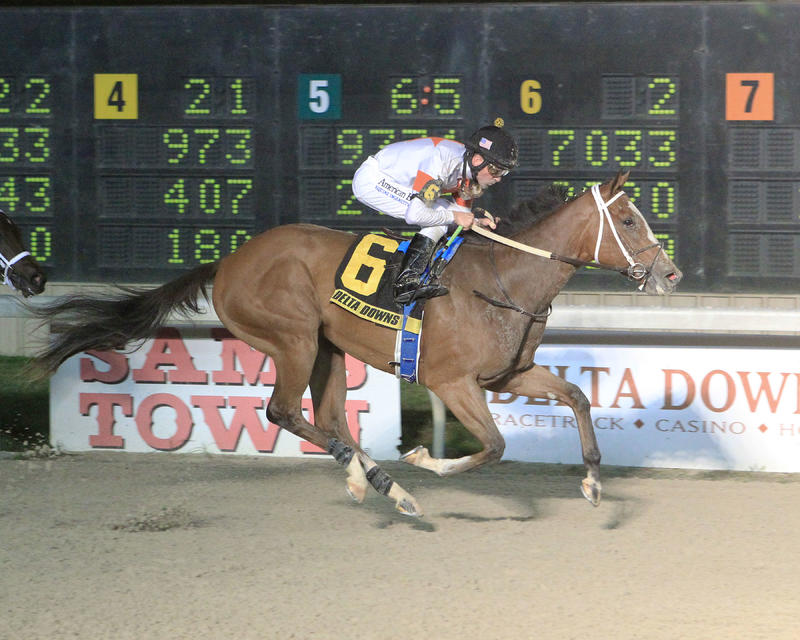 Golden Mischief (Delta Downs/Coady Photography)