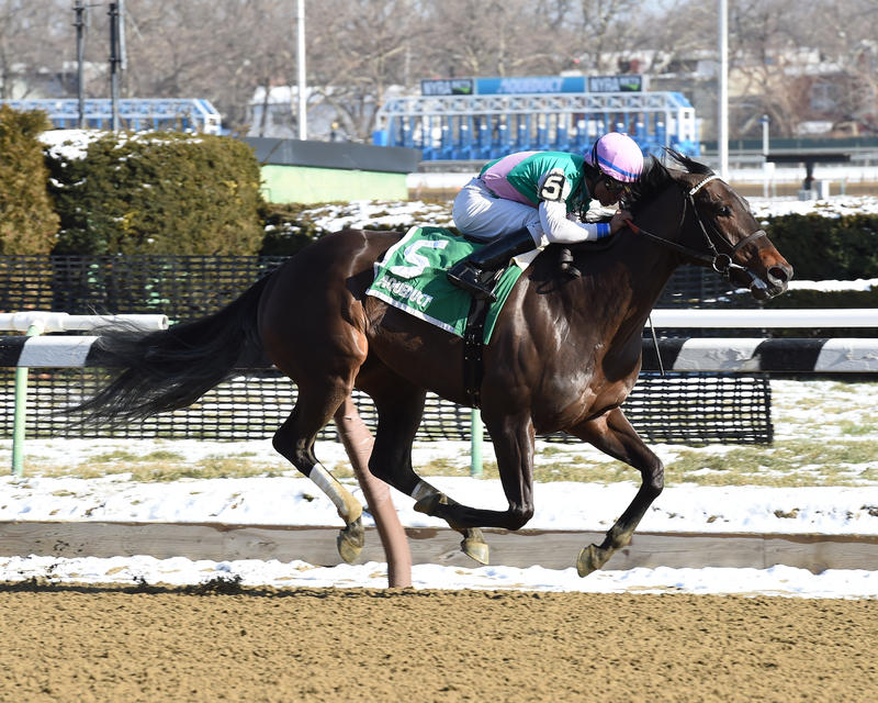 Lockdown (NYRA/Adam Coglianese Photography)