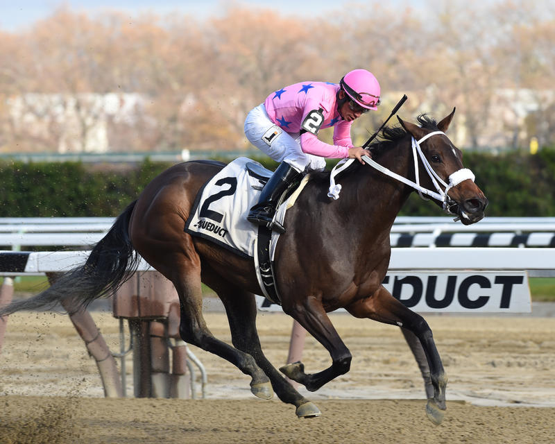 Miss Sky Warrior (NYRA/Adam Coglianese Photogrpahy)