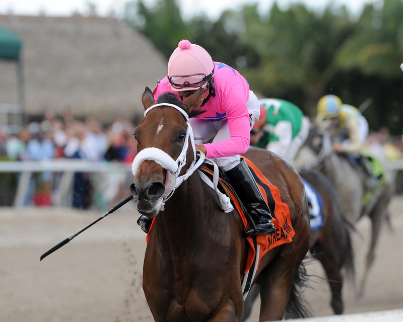 Miss Sky Warrior (KennyMartin/Adam Coglianese Photography)