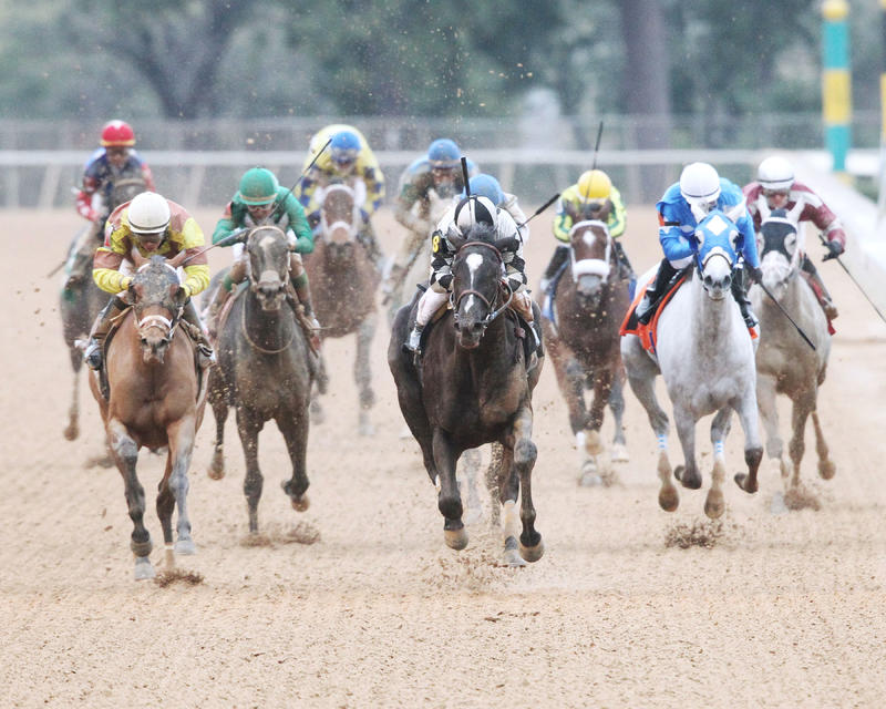 It Tiz Well (Oaklawn Park/Coady Photography)
