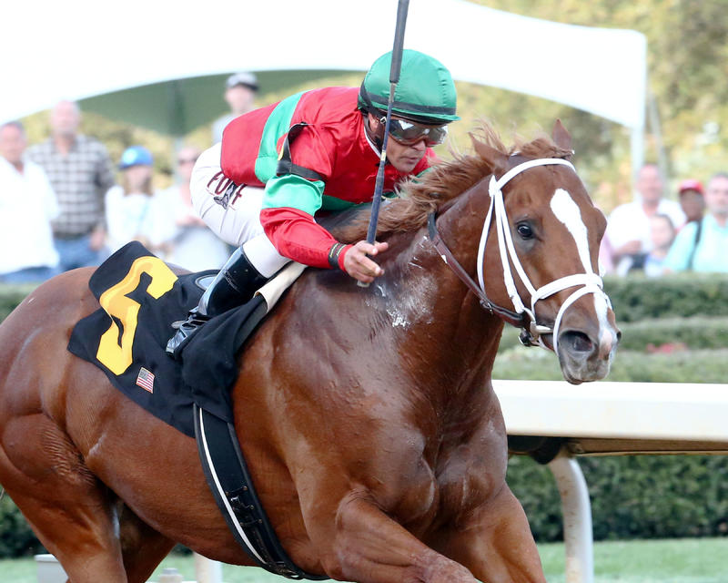 Malagacy (Oaklawn Park/Coady Photography)