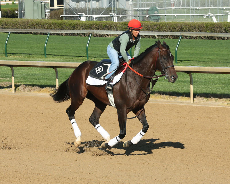 J Boys Echo (Churchill Downs/Coady Photography)