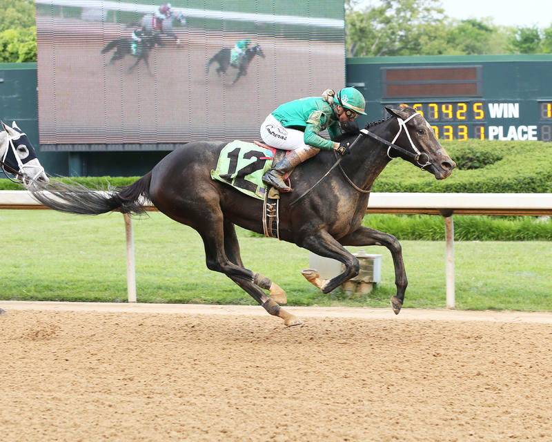 Ever So Clever (Oaklawn Park/Coady Photography)