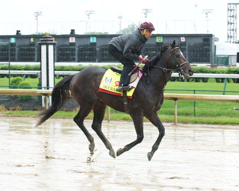 McCraken (Churchill Downs/Coady Photography)
