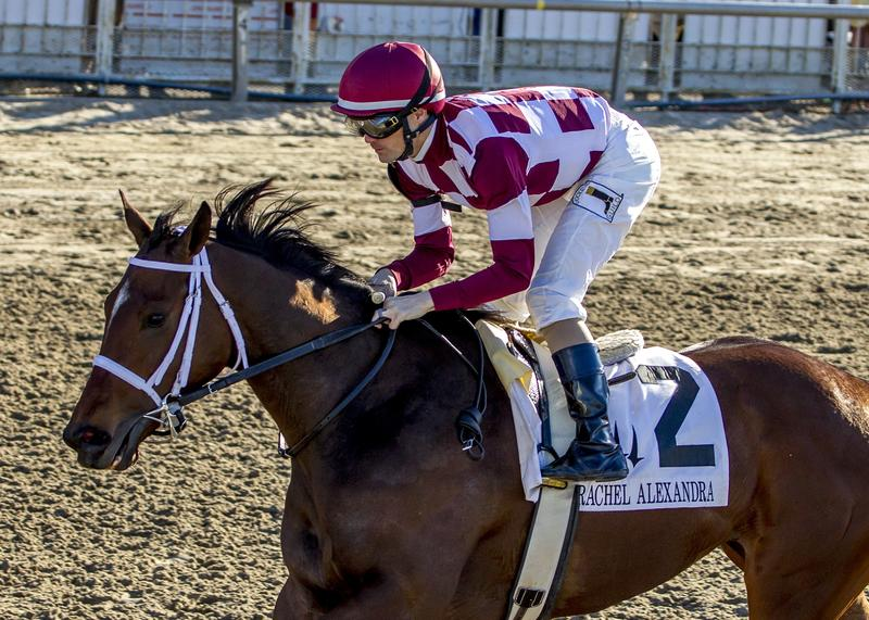 2/25/2017  -  Farrell with jockey Channing Hill aboard wins…