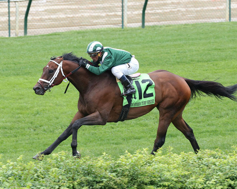 GREEN-MASK---The-Twin-Spires-Turf-Sprint-Gr-lll---23rd-Running---05-05-17---R07---CD---Inside-Fin-1