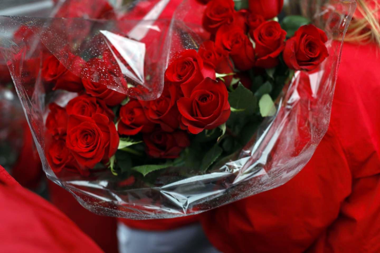 garland-of-roses-6