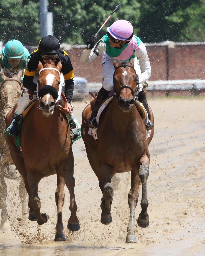 PAULASSILVERLINING---The-Humana-Distaff---Gr-1---31st-Running---05-06-17---R06---CD---Head-On-2