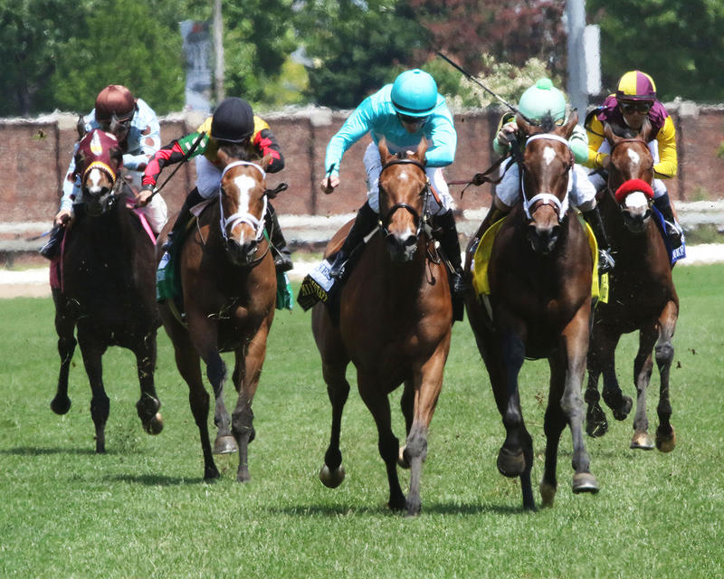 ROCA-ROJO---The-Churchill-Distaff-Turf-Mile-Gr-ll---The-32nd-Running---05-06-17---R07---CD---Head-On-1