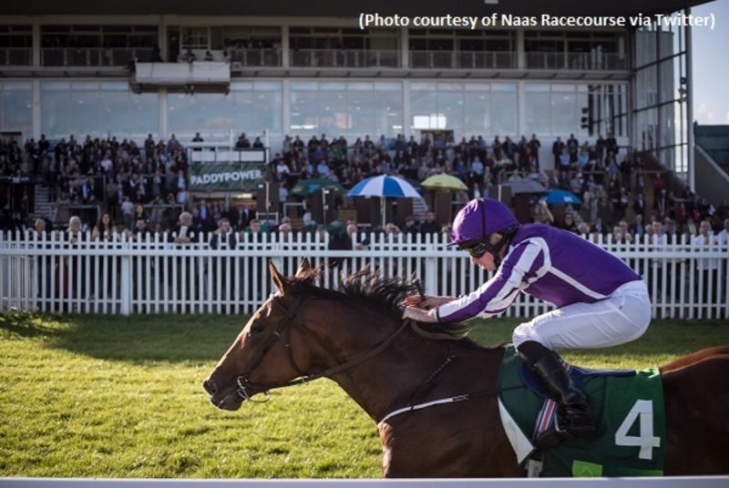 Saxon Warrior (Photo courtesy of Naas Racecourse via Twitter)