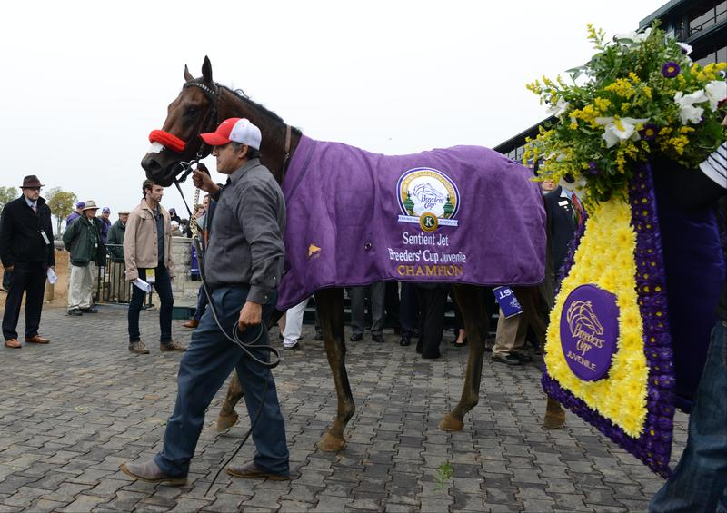 Breeders Cup Juvenile Winner Nyquist