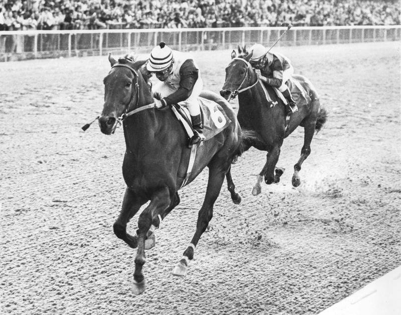 Forego wins the Woodward Stakes