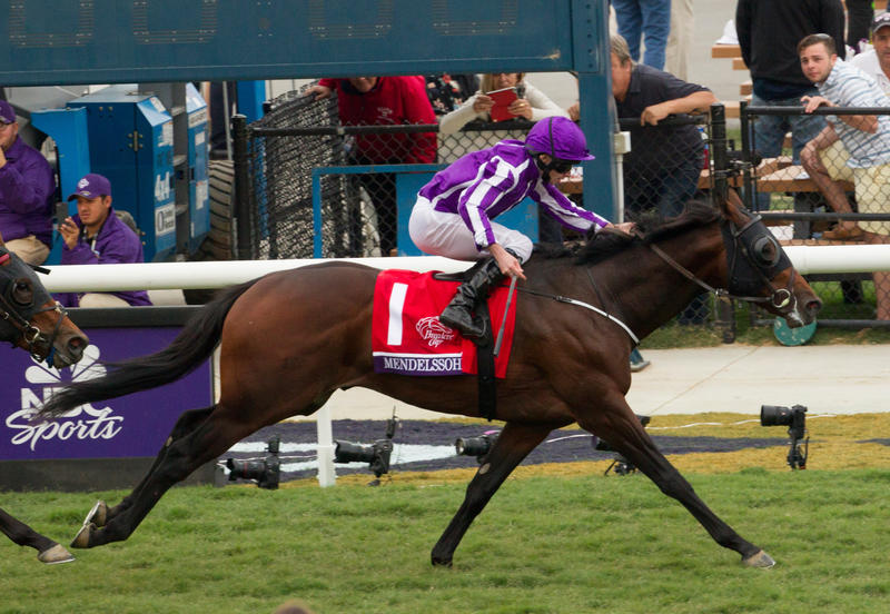 2017 Breeders' Cup World Championships at Del Mar - Day…