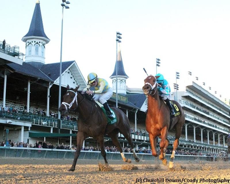 Road to Victory (Churchill Downs/Coady Photography)
