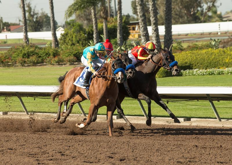 McKenzie wins the Los Alamitos Futurity