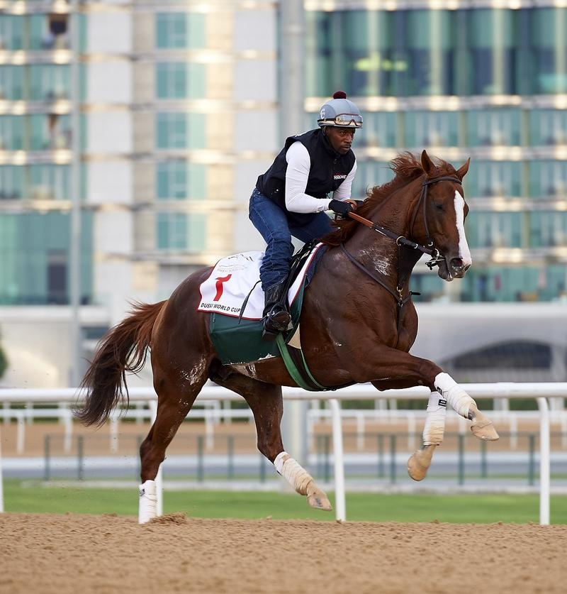 March 22 2016:  does morning trackwork at Meydan on Monday…