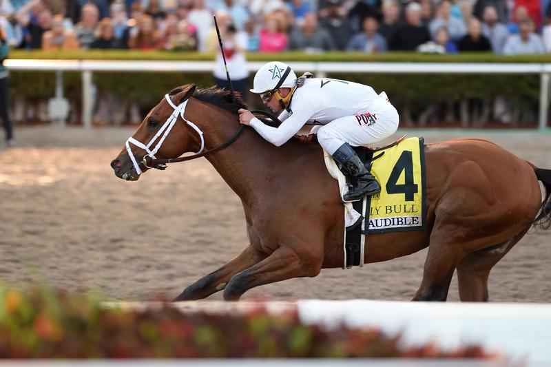 Audible wins the Holy Bull Stakes