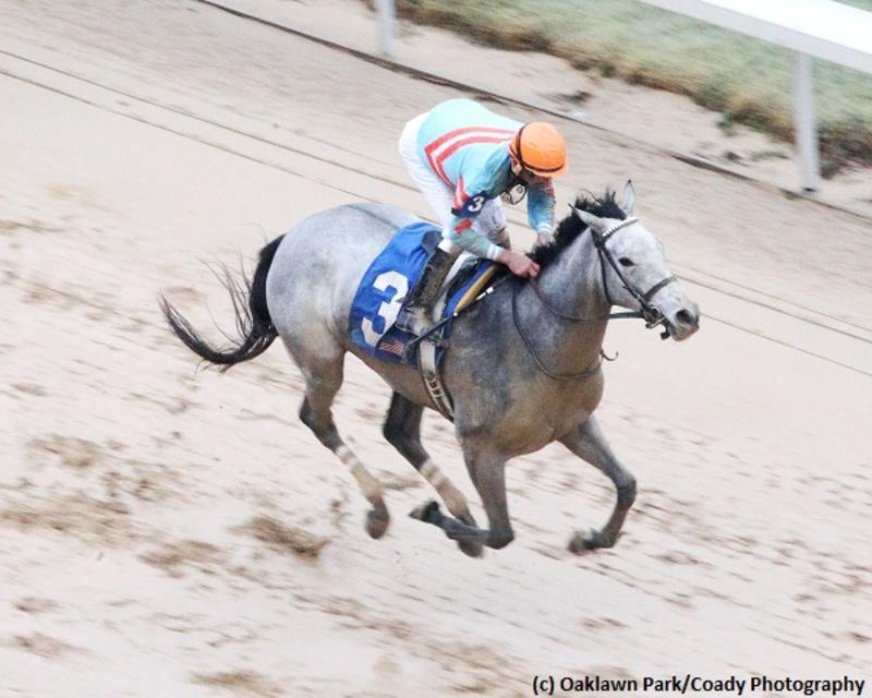 Red Ruby (Oaklawn Park/Coady Photography)