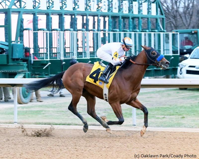 Mourinho (Oaklawn Park/Coady Photography)