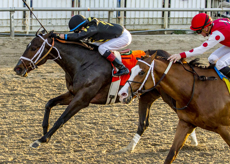 2-17-2018  Bravazo, with Miguel Mena aboard, pushes to the…