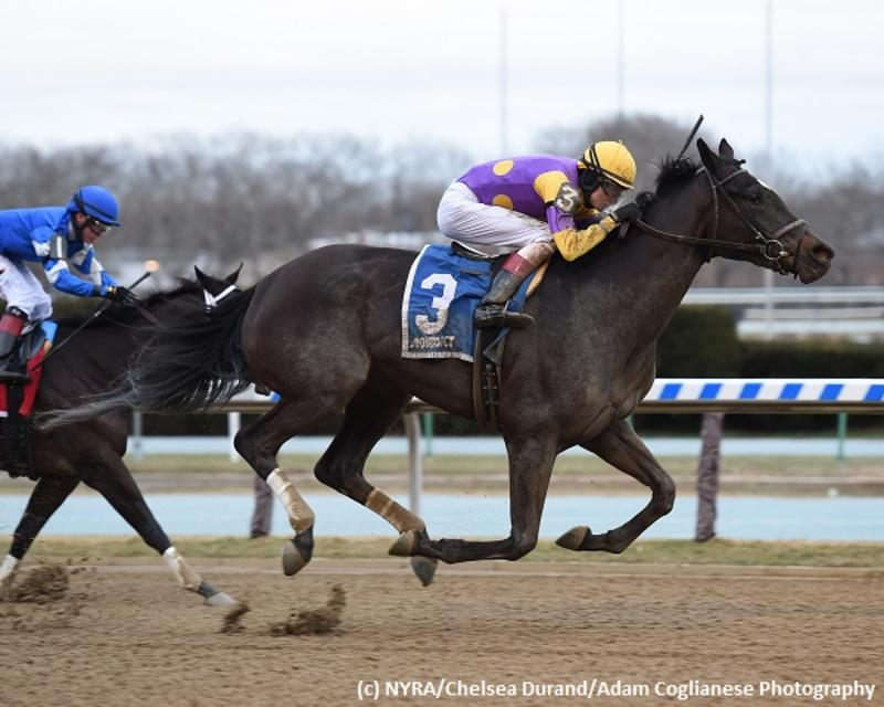 Midnight Disguise (c) NYRA/Chelsea Durand/Adam Coglianese…