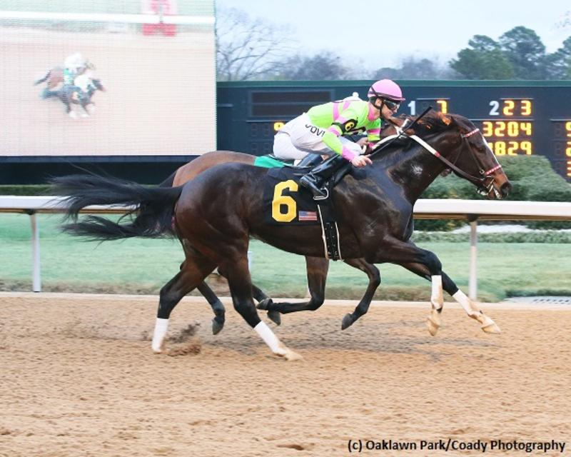 Amy's Challenge (c) Oaklawn Park/Coady Photography