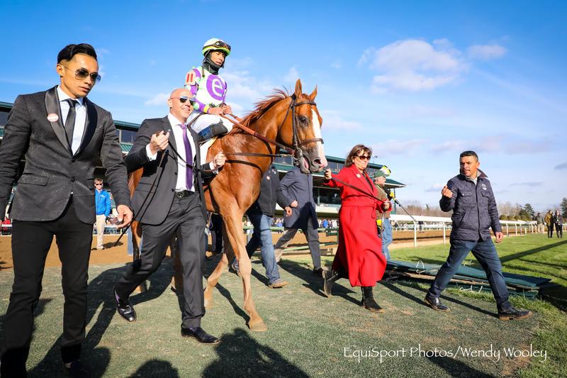 Good Magic (c) Wendy Wooley/EquiSport Photos