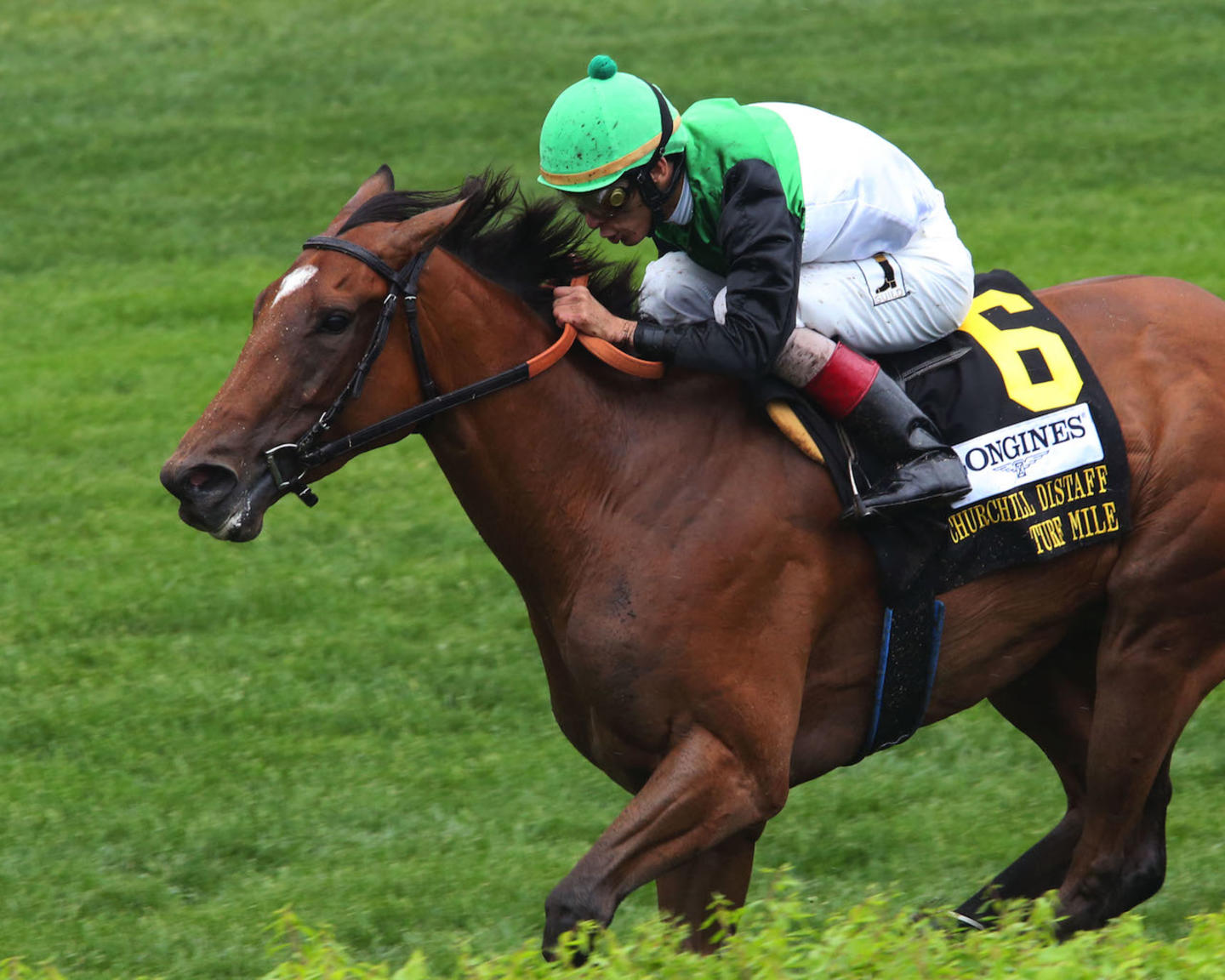 PROCTOR'S LEDGE - The Longines Churchill Distaff Turf Mile G2 - 33rd Running - 05-05-18 - R07 - CD - Inside Aerial Finish 01