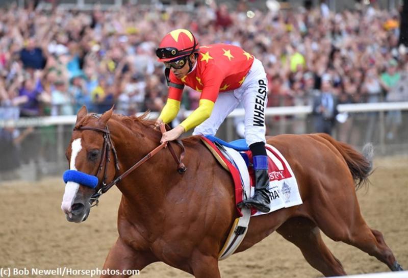 Justify (c) Bob Newell/Horsephotos.com