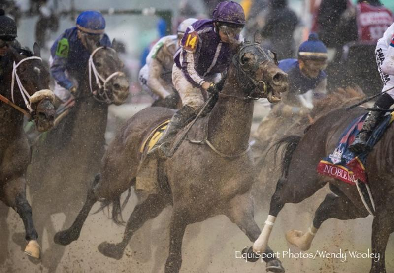 Mendelssohn (c) Wendy Wooley/EquiSport Photos