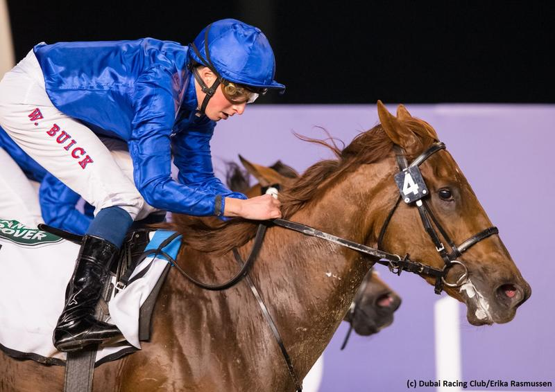 Divine Image (c) Dubai Racing Club/Erika Rasmussen