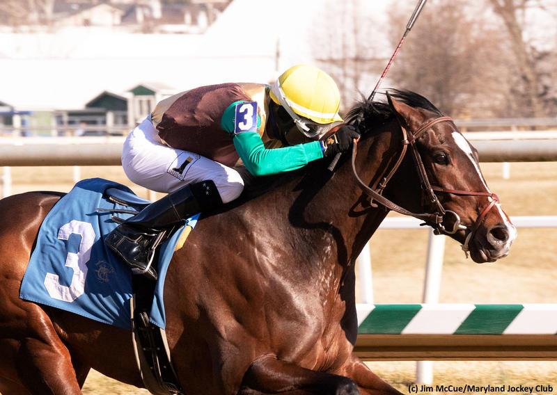 Alwaysmining (c) Jim McCue/Maryland Jockey Club