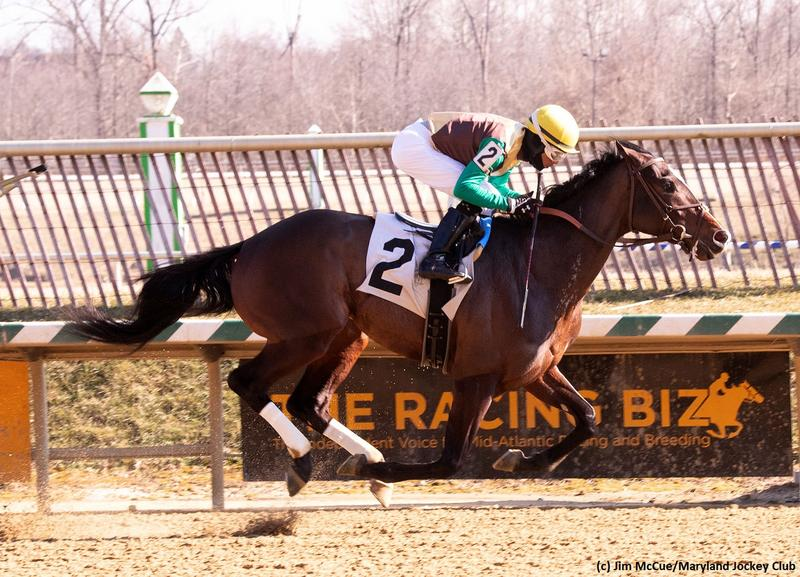 ALWAYSMINING (Jim McCue/Maryland Jockey Club)