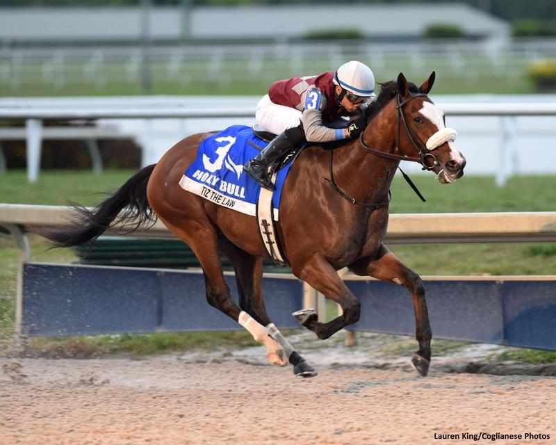 TIZ THE LAW (King/Coglianese Photography)