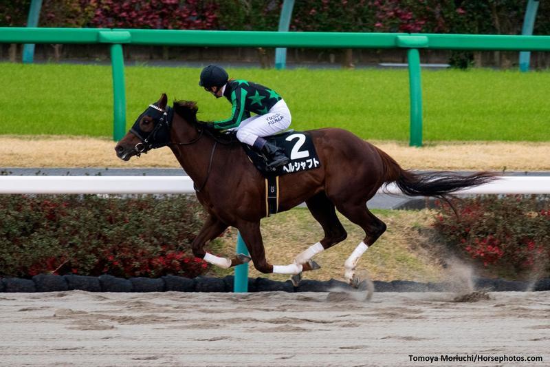 Herrschaft(USA), with jockey Yusuke Fujioka, wins The Fukuryu…