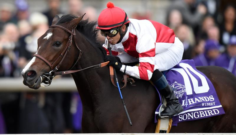 Songbird (Breeders' Cup Ltd.)