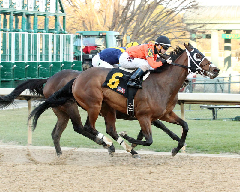 Marquee Miss (Oaklawn Park/Coady Photography)