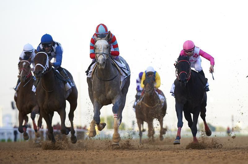 20160325 Lani UAE Derby (Photo courtesy Dubai Racing Club-Andrew…