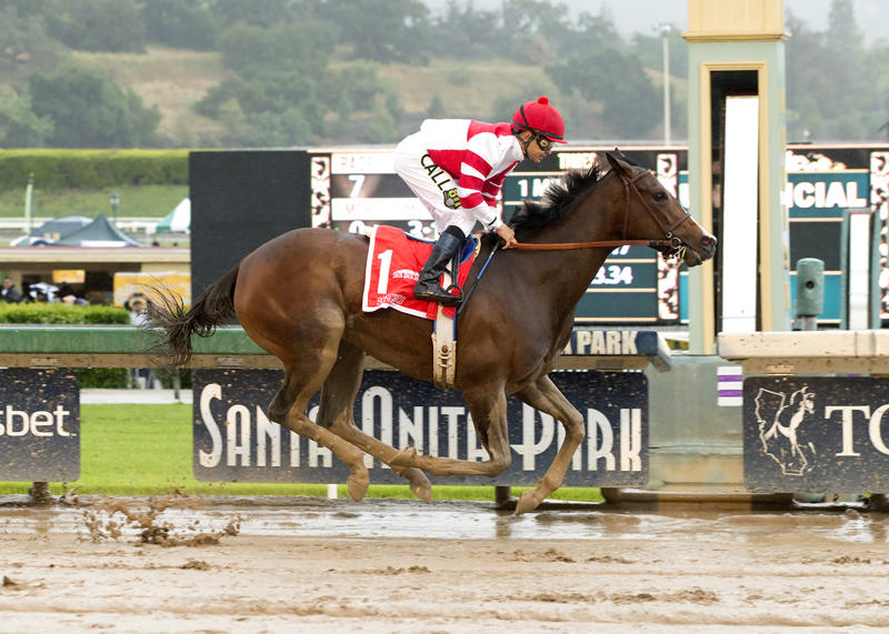 Songbird (Benoit Photos)