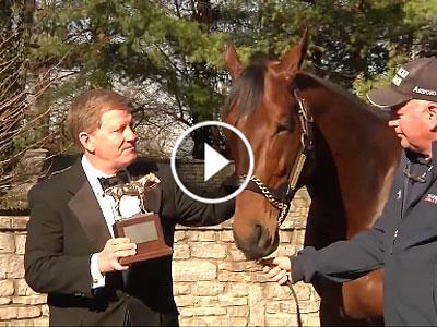 American Pharoah gets horse of the year