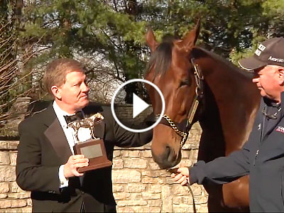 American Pharoah gets horse of the year